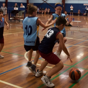 181109 NSW CPS Basketball Challenge 183