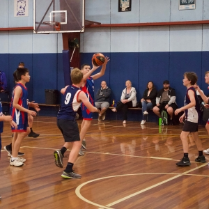181109 NSW CPS Basketball Challenge 274