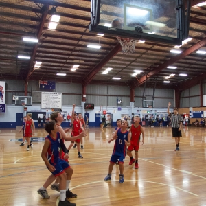 181109 NSW CPS Basketball Challenge 306