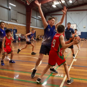 181109 NSW CPS Basketball Challenge 137