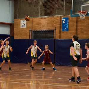 181109 NSW CPS Basketball Challenge 235