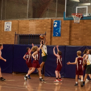 181109 NSW CPS Basketball Challenge 231