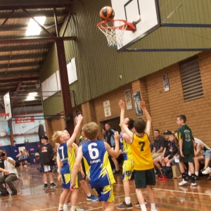 181109 NSW CPS Basketball Challenge 122