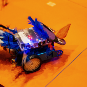 mBot Finals 2019 WEB 2