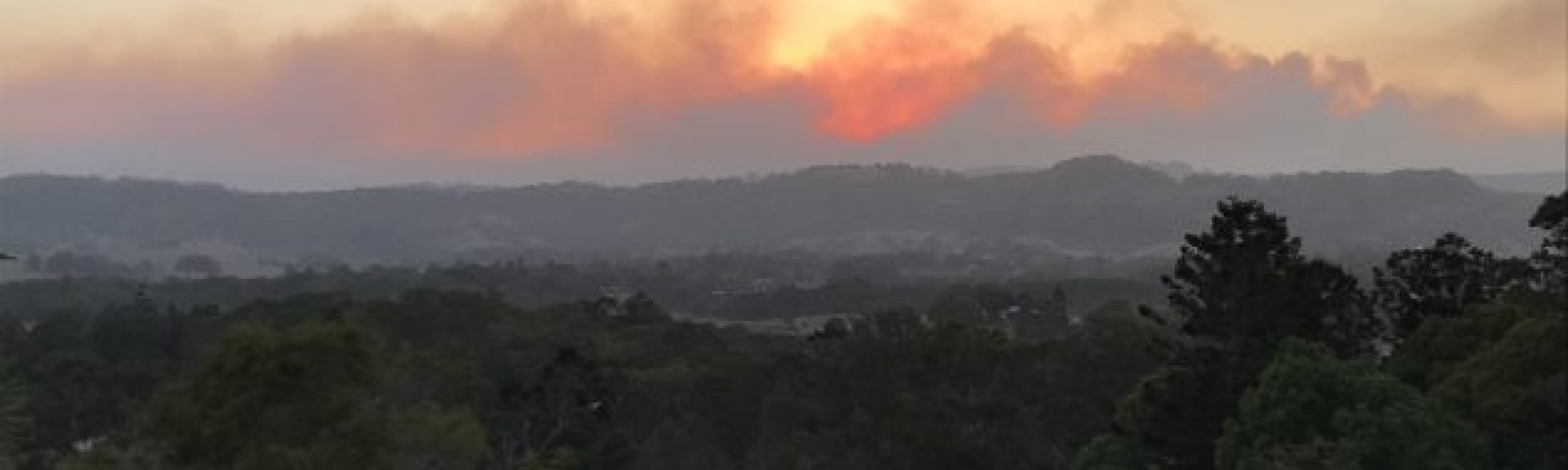 Smoke Advisory: NSW bushfires