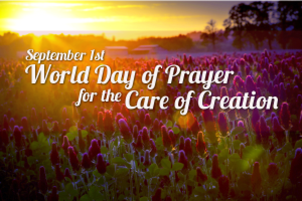 World Day Care for Creation