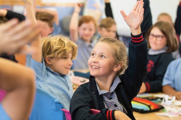 NAPLAN High Learning Gain Success for CEDoW Schools