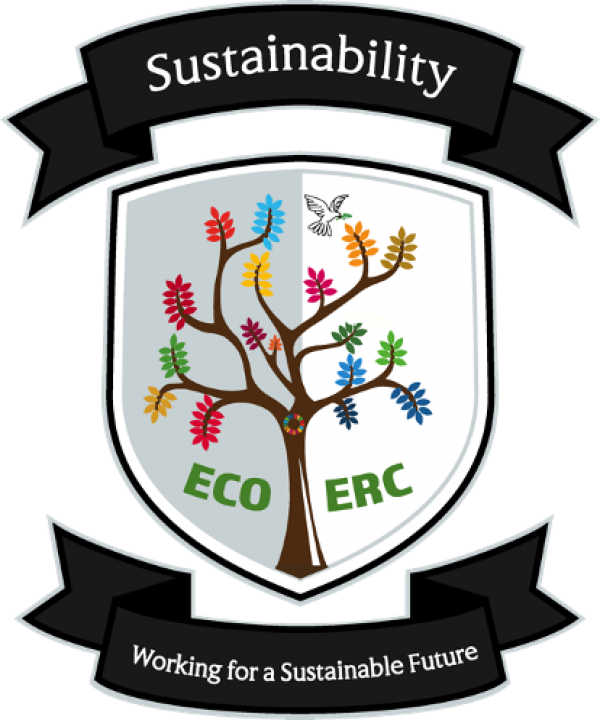 Secondary Students Zoom In for ECO Conference