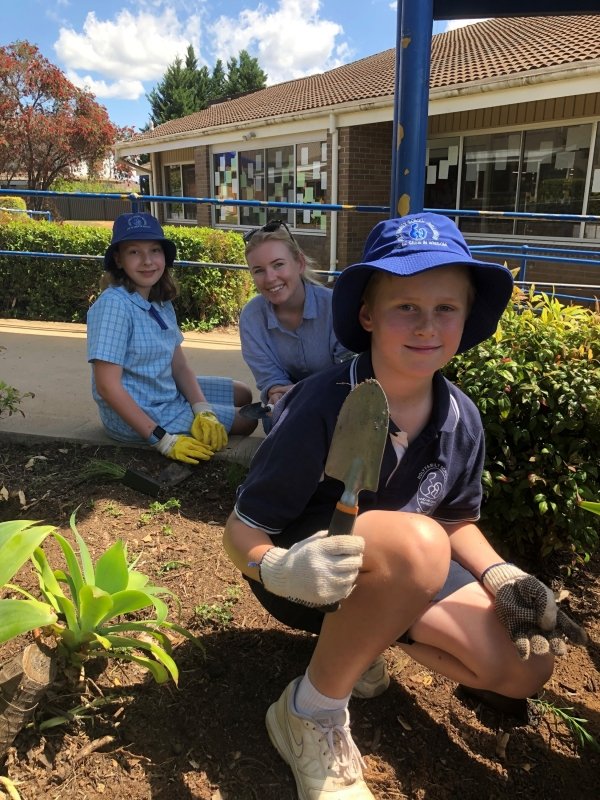 Green Thumbs at Holy Family Ingleburn
