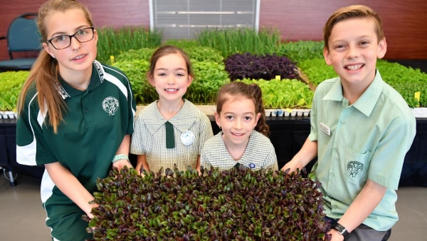 St Clare's Narellan Vale Environmental Campaign