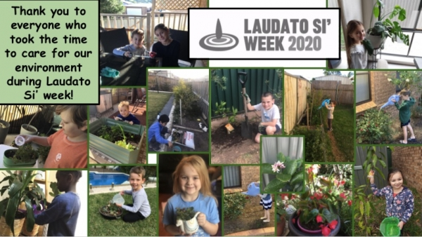 St Thomas More Ruse Celebrates Laudato Si' Week